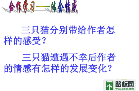 七年级语文猫课件